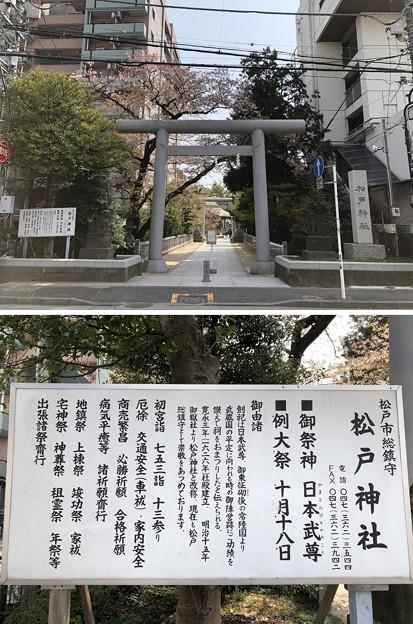 松戸宿(千葉県)旧水戸街道・松戸神社