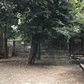 写真: 平塚神社/平塚城跡(北区)このさき平塚(鎧塚・甲冑塚)
