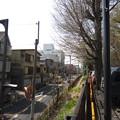 Photos: 12.04.10.平塚神社/平塚城跡(北区)蝉坂