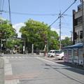 秩父神社(埼玉県秩父市)
