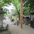 写真: 定林寺(秩父市)参道