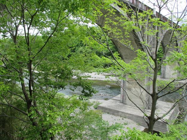 旧秩父橋下(埼玉県)