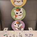 Photos: 「劇場版 夏目友人帳 ~うつせみに結ぶ~」鑑賞。