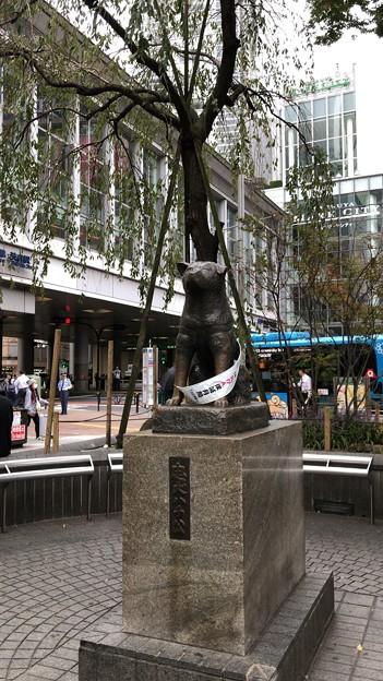 忠犬ハチ公像(渋谷区)