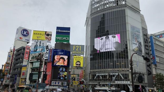 渋谷センター街(渋谷区)