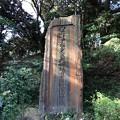 Photos: 安針塚(按針塚。横須賀市 県立塚山公園)