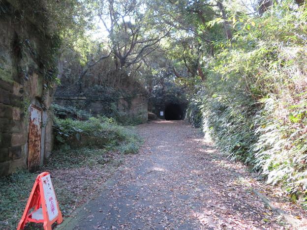 観音崎砲台 北門第二砲台跡(横須賀市)レンガ隧道(軍用道路)