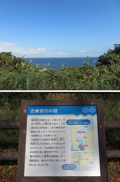 観音崎砲台 三軒屋砲台跡(横須賀市)三軒屋園地