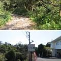 写真: 新井城 外引橋跡/小網代の森(三浦市)