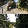 Photos: 新井城 土塁(三浦市)遊歩道