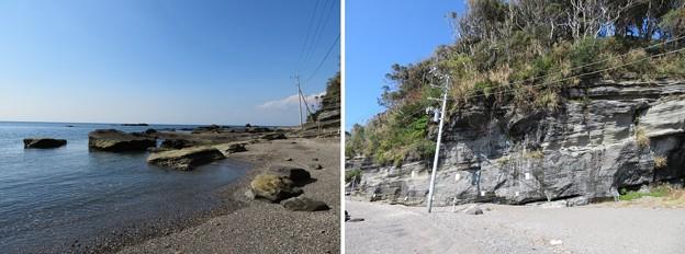 写真: 新井城(三浦市)三方の海岸
