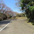 Photos: 新井城(三浦市)郭