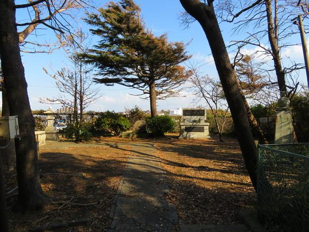 Photos: 三崎城(三浦市)物見郭?
