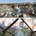 写真: 三崎城(三浦市)より東