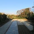 写真: 和田城(和田氏館。三浦市)空堀跡