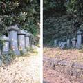 写真: 白旗神社(三浦市初声町和田)庚申塔群