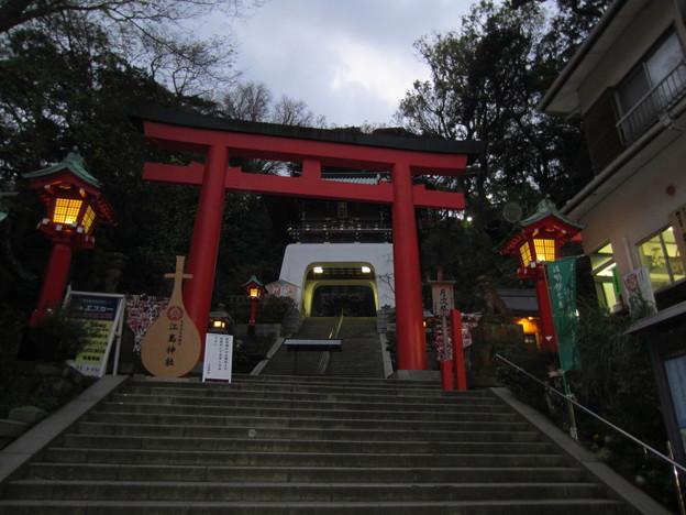 11.11.30.江島神社(藤沢市江の島)二の鳥居