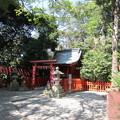 Photos: 鶴岡八幡宮(鎌倉市)丸山稲荷神社