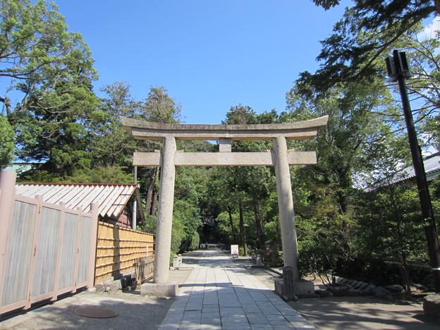 鶴岡八幡宮(鎌倉市)白旗神社鳥居