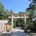 写真: 鶴岡八幡宮(鎌倉市)白旗神社鳥居