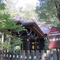 写真: 鶴岡八幡宮(鎌倉市)白旗神社拝殿