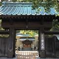 常光寺(藤沢市)山門