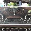 写真: 白幡神社(藤沢市)手水舎