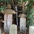写真: 白幡神社(藤沢市)江ノ島弁財天道標・庚申塔群