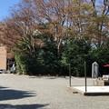 Photos: 白幡神社(藤沢市)