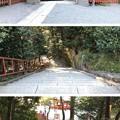 鶴岡八幡宮(鎌倉市)石段