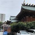 写真: 湯島天満宮(文京区)本殿背後