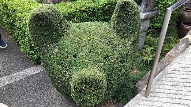 豚みそ丼本舗 野さか(秩父市)