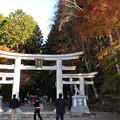 三峯神社(秩父市)三輪鳥居