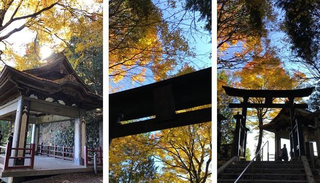 三峯神社(秩父市)奥之宮遥拝所