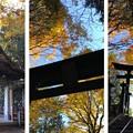 Photos: 三峯神社(秩父市)奥之宮遥拝所