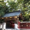 Photos: 秩父神社(秩父市)白虎門