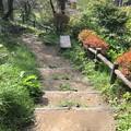 Photos: 羊山公園 牧水の滝(秩父市)