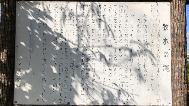羊山公園 牧水の滝(秩父市)