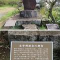 宗我神社(小田原市)尾崎一雄文学碑