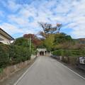 Photos: 宗我神社(小田原市)参道・二の鳥居