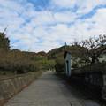 Photos: 曽我の大山みち(小田原市)