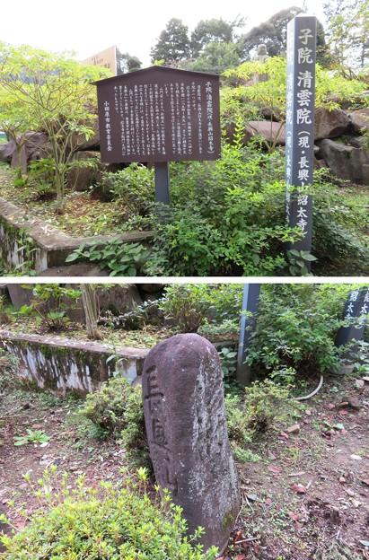 紹太寺(小田原市)境界石