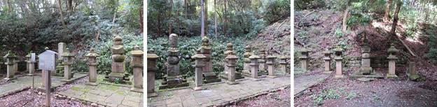 紹太寺(小田原市)稲葉氏一族墓所