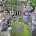 写真: 最誓寺(伊東市)伊東家墓碑