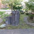 Photos: 伝 伊東家屋敷跡(伊東市営 物見塚公園)芭蕉句碑