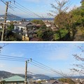 Photos: 伝 伊東家屋敷跡(伊東市営 物見塚公園)伊東港