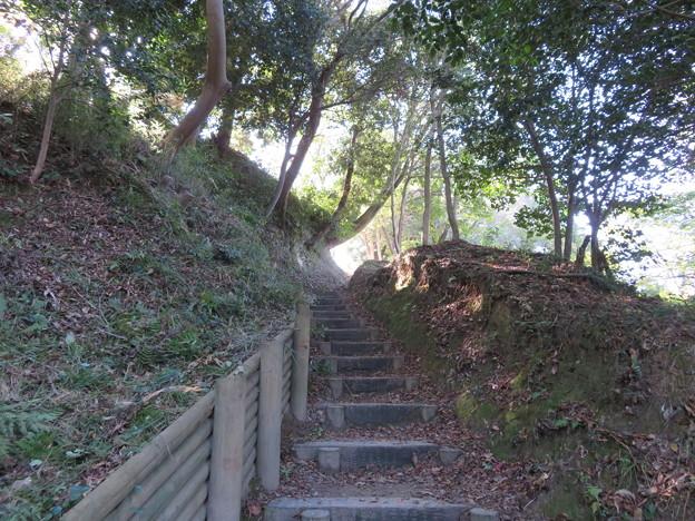 韮山城(伊豆の国市)二の丸