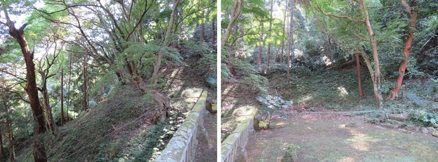 写真: 守山八幡宮(伊豆の国市)