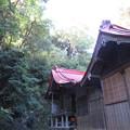 守山八幡宮(伊豆の国市)