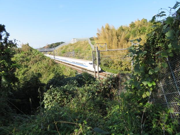 興国寺城(沼津市)東海道新幹線